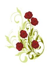 floral de rose
