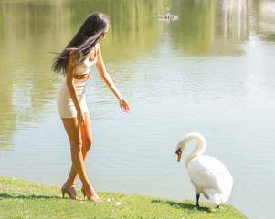 Beautiful girl with a swan on a lake