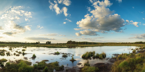 Summer sunset panorama landscape over wetlands