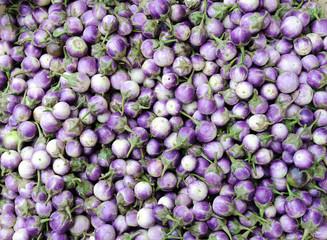 Small eggplant on thai farmer's market