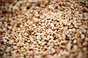 Unroasted raw coffee beans grains background with shallow DOF