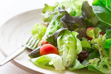 vegetable salad in wooden bowl , healthy food