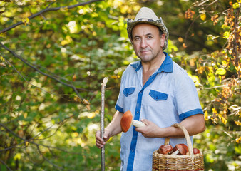 Middle aged smiling man picking mushrooms in the autumn forest