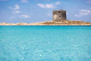 Sardinia Beach - La Pelosa