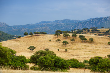 Peaceful rural landscape of Sardinia