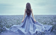 Leinwanddruck Bild - Back view of standing young woman in blue dress