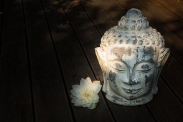 Buddhakopf mit Seerose