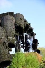 Wundervolles Wasserras