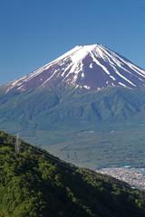 Mt Fuji in summer season from Kawaguchiko lake