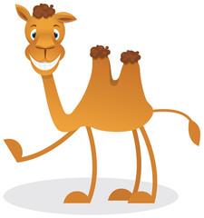 Cartoon camel
