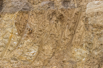 Cross section of dirt background
