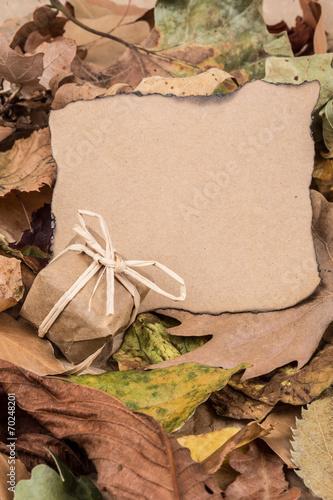 canvas print picture autumn background