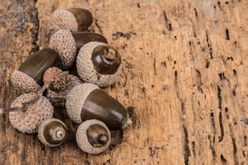acorns on wooden surface
