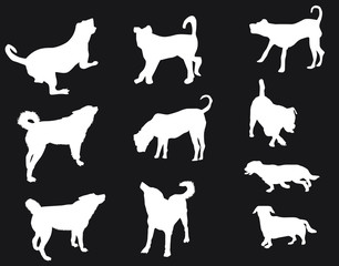 ten white silhouettes of dog