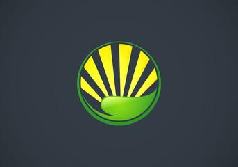 leaf sun ecology abstract vector logo