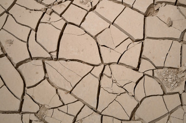 Cracks in dry and parched earth