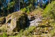 Wald Szene mit Felsen aus Granit