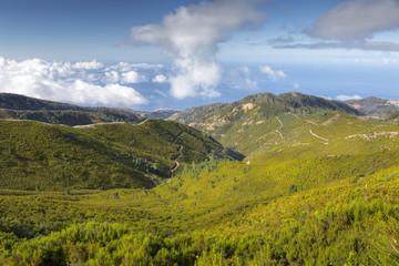 Landschaft auf der Insel Madeira, Portugal
