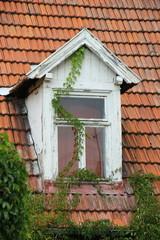 Weißes Gaubenfenster mit Weinranken