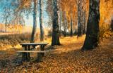 Fototapeta Golden autumn