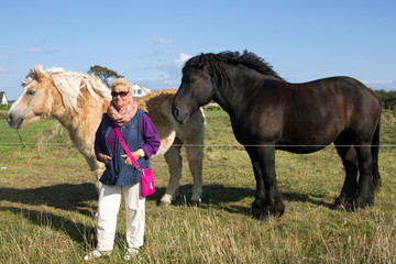 Seniorin und Pferde
