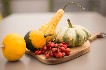 Composition of small pumpkins
