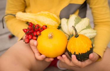 Pumpkins in the hands