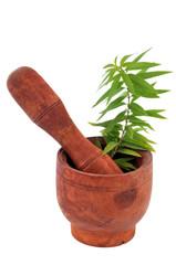 Mortier, pilon et feuilles de verveine citronnée
