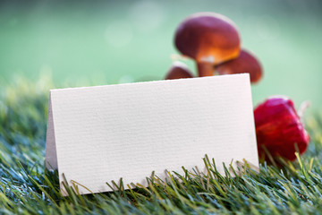 Blank Place Card with Mushrooms on Grass