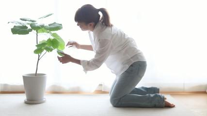 観葉植物に水をあげる女の子