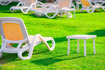 green lawn and empty sun loungers at dawn