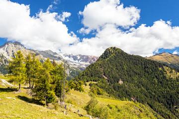 Alpe Granda - Vista Monte Disgrazia - Valtellina (IT)