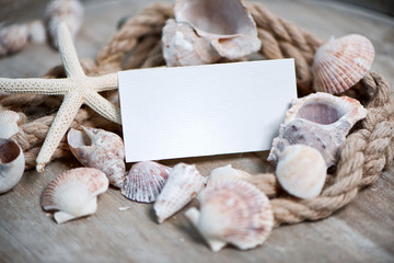 Maritime background with Blank Card and seashells