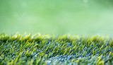 Close Up background of Green Grass
