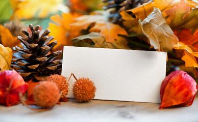 Leere Karte vor Herbst Hintergrund mit bunten Blättern