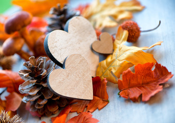 Still Life of Wooden Hearts Amongst Autumn Foliage