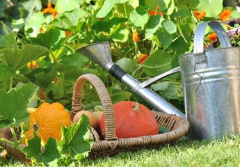 panier de légumes d'automne