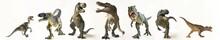 "Постер, картина, фотообои ""A Group of Seven Dinosaurs in a Row"""