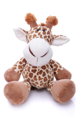 Plush giraffe on white background