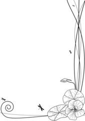 nasturtium and dragonflies