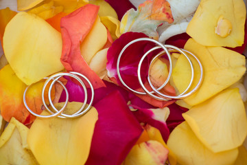 wedding rings on a rose petals
