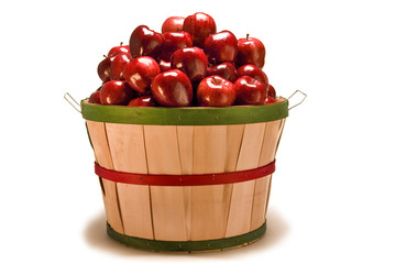 Big Basket Of Freshly Picked Apples