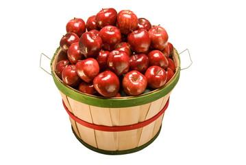 Bushel Basket Of Fresh Picked Apples