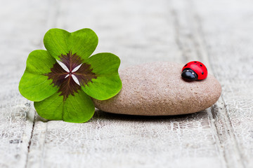 four leaf clover and ladybug with stone on wood