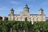 château du vignoble bordelais - Fine Art prints