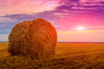 hay roll on sunset background