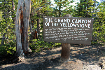 Yellowstone National Park - Grand Canyon