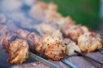 chicken shish kebab  with the mix of spices on bbq