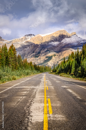 Landscape view of the road on Icefields parkway in Canadian Rock © Martin M303