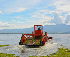 automatic cleaning ship  are removing water hyacinth in lake